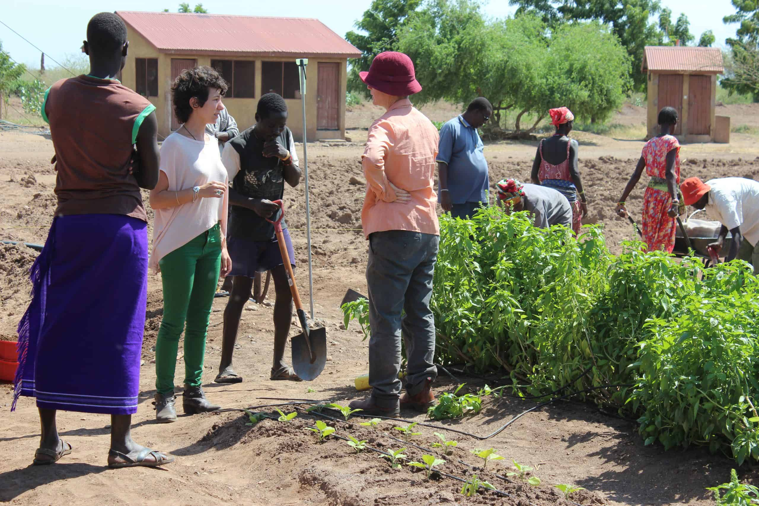 14. Brit Olam Israeli agronomists in training farm in Turkana Kenya 2
