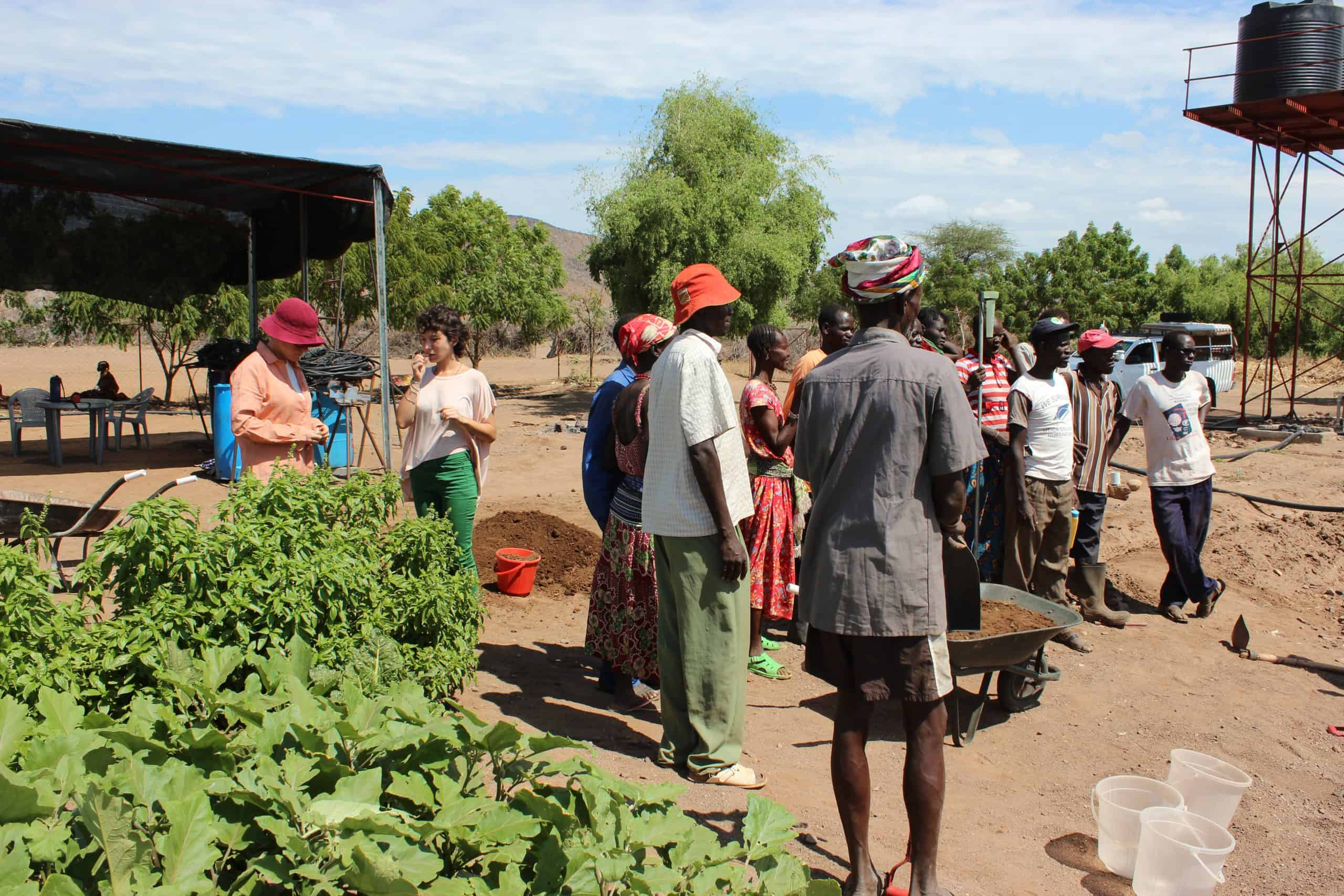 Brit Olam Israeli agronomists in training farm in Turkana Kenya 1